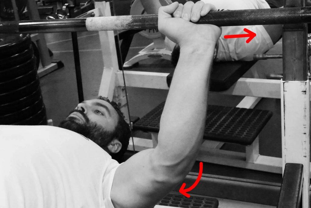 Développé couché : la contraction des triceps pousse l'avant bras latéralement. Elle ne pousse pas directement la barre vers le haut.